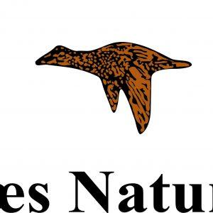 Røsnæs Naturskole & Lejrskole Logo
